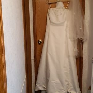 Beautiful Wedding Dress with Vail